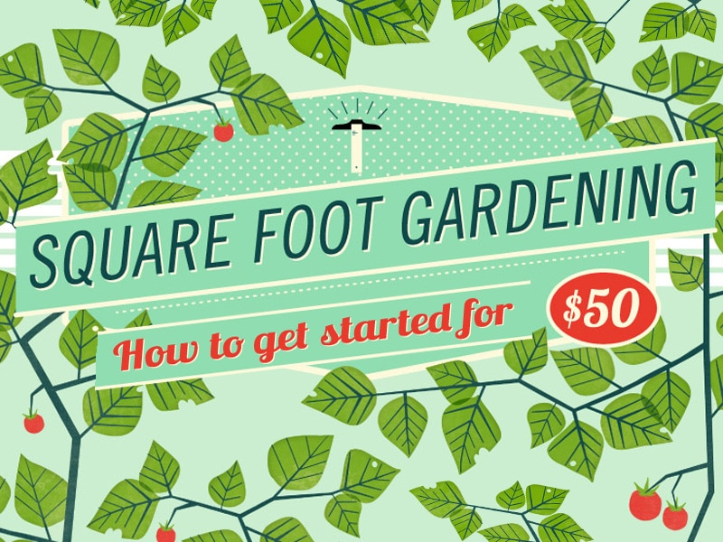 How to Get Started on Square Gardening (Infographic)
